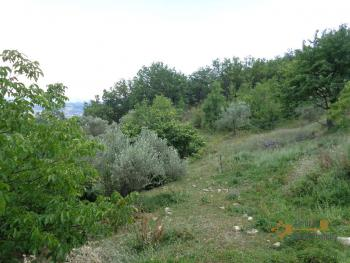 Charming country house with land and fantastic view. Abruzzo. Img32