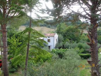 Petite country house with 200 sqm garden for sale. Abruzzo. Img22