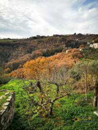 Bargain house with back garden and terrace for sale, Molise. Img7