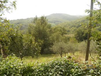 Country house to restore with 2000 sqm of land. Italy. Img5