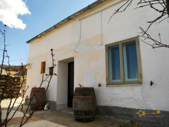 Country house with land for sale, in Roccaspinalveti. Img2