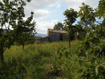 Stone house to restore, with orchard. Guilmi. Abruzzo. Img3