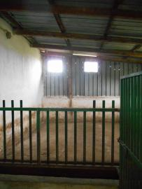 Farmhouse with 3,6 hectares of land. Dogliola. Abruzzo. Img17