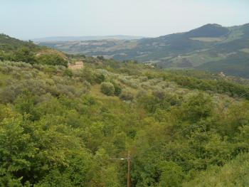 Farmhouse with 3,6 hectares of land. Dogliola. Abruzzo. Img2