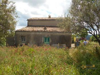 Country house with olive grove for sale in southern Abruzzo. Img2