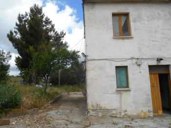 Country house with olive grove for sale in southern Abruzzo. Img3