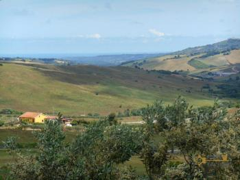 Country house with olive grove for sale in southern Abruzzo. Img5