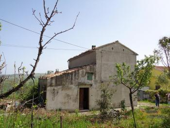 Country house with olive grove for sale in southern Abruzzo. Img19