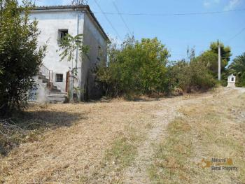 Country house with olive grove for sale in Atessa. Abruzzo. Img2