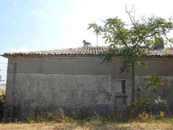 Country house with olive grove for sale in Atessa. Abruzzo. Img12