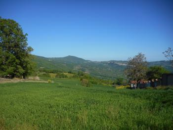 Large country house with garden for sale near Palmoli. Img2