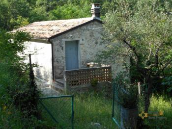 Characteristic cottage surrounded by 4600 sqm of land. Img2