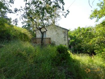 Characteristic cottage surrounded by 4600 sqm of land. Img18