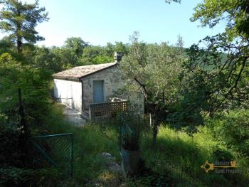 Characteristic cottage surrounded by 4600 sqm of land. Img1