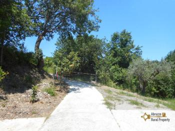 Plot of land of 3500 sqm with country shed. Dogliola. Img10