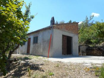 Plot of land of 3500 sqm with country shed. Dogliola. Img3