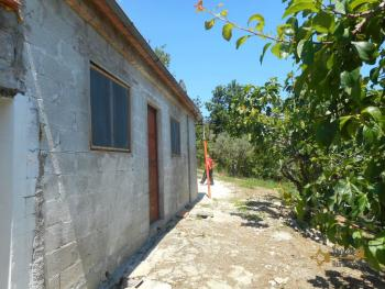 Plot of land of 3500 sqm with country shed. Dogliola. Img11
