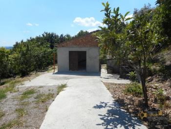 Plot of land of 3500 sqm with country shed. Dogliola. Img4