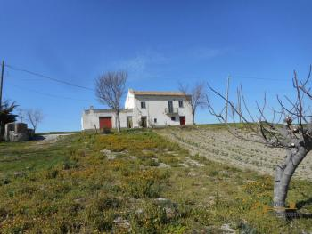 Country house with one hectare of land in Casalanguida. Img2