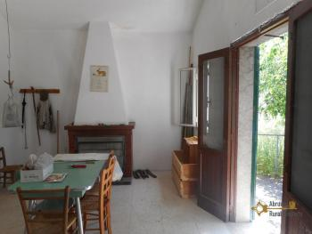 Tiny country house surrounded by 6000 sqm of land. Salcito. Img11