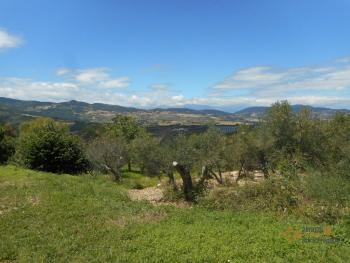 Country house with garden for sale in Roccaspinalveti. Img2