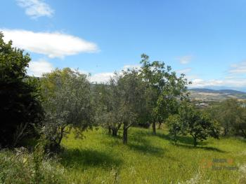 Country house with garden for sale in Roccaspinalveti. Img5