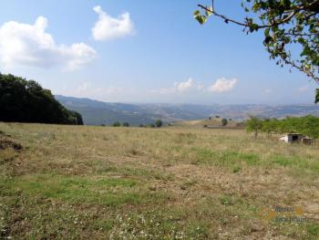 Two country houses with land for sale near Trivento. Molise. Img6