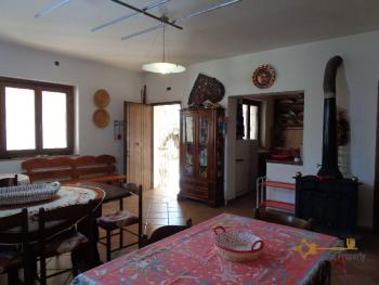 Rustic villa surrounded by 9000 sqm of land with olive grove. Img9