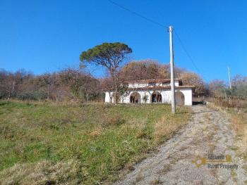 Rustic villa surrounded by 9000 sqm of land with olive grove. Img2