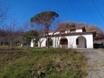 Rustic villa surrounded by 9000 sqm of land with olive grove.