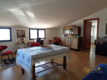 Rustic villa surrounded by 9000 sqm of land with olive grove. Img25
