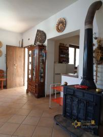 Rustic villa surrounded by 9000 sqm of land with olive grove. Img10
