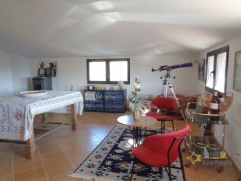 Rustic villa surrounded by 9000 sqm of land with olive grove. Img33