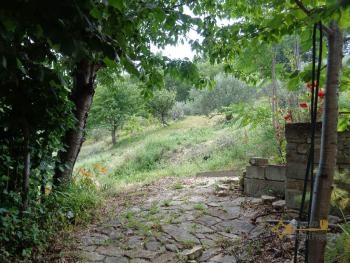 Charming country house with land and fantastic view. Abruzzo. Img7